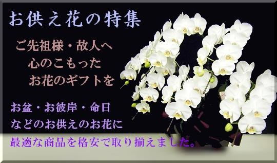 お盆・お彼岸・命日などのお供え花。